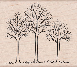 Three Winter Trees K5255