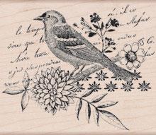 Bird Collage K5503