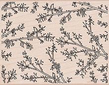 Delicate Branches S5262