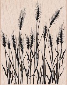 Silhouette Grass S5316