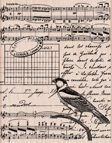 Musical Collage S5501