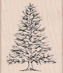 Winter Pine K5256