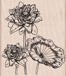 Flower Trio K5373