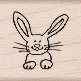 Smiling Bunny A5015