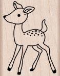 Young Deer D5234