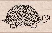 Turtle E5342