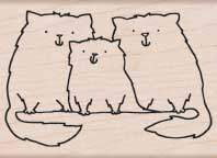 Cat Family F5169