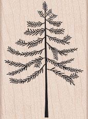 Winter Tree H5244