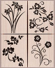Solid Flowers Flourish LL228
